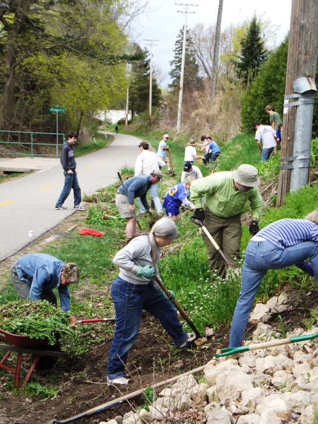 Neighborhood volunteers are joined by the Blessed Sacrament Boy Scout Troop in a May, 2011 work party.  Volunteers are clearing out the Regent Street side of the SW Bike Path.  Photo by Jacob Blasczyk.