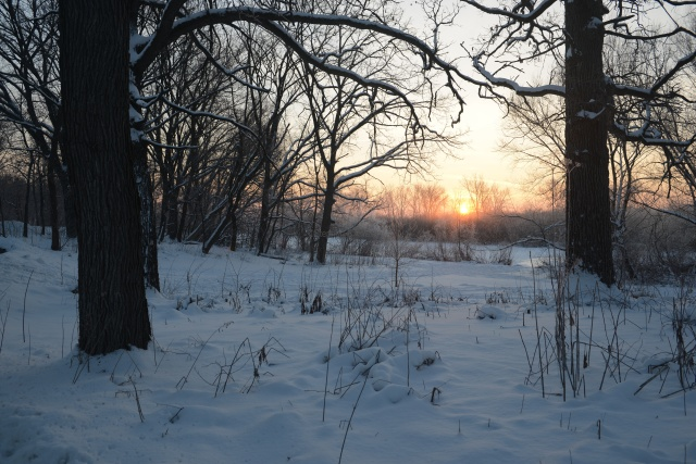 The Lake Wingra Watershed is cold and snow-covered on March 20, 2013, much the same as it was on Feb. 6, 2013 when the image above was captured.  Sunrise over Lake Wingra and Ho-Nee-Um Pond at the Wingra Oak Savanna.