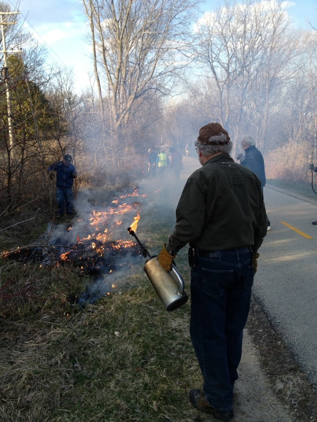 Jack Lawton with the drip torch, managing the burn on the prairie planting Westmorland Neighborhood side of the SW Bike Path.