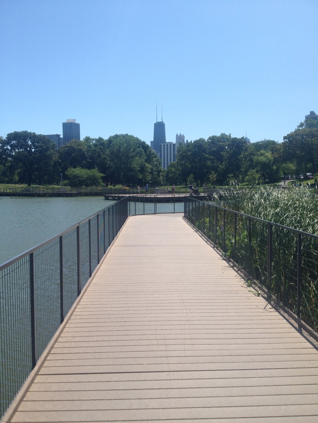 A wetland recreation in Lincoln Park, Chicago, Illinois.
