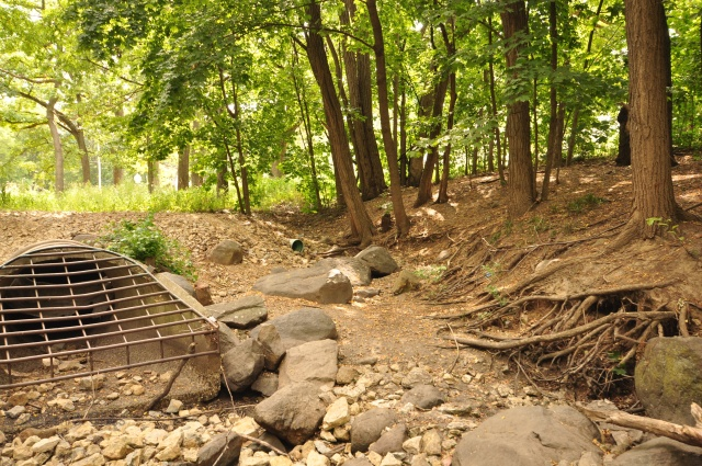 """Storm water """"outfalls"""" as they empty into the Cherokee Drive storm water channel."""