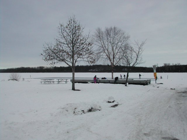 Playing ice hockey on Lake Wingra  just offshore from the boat landing at Wingra Park.