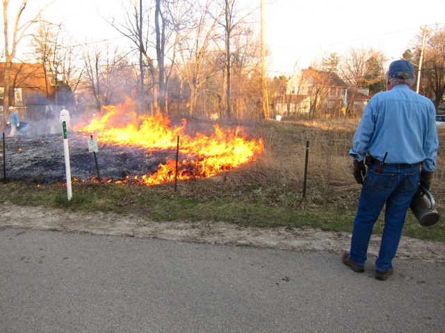 Drip torch man watching fire.  Photo by Susan Slapnick.
