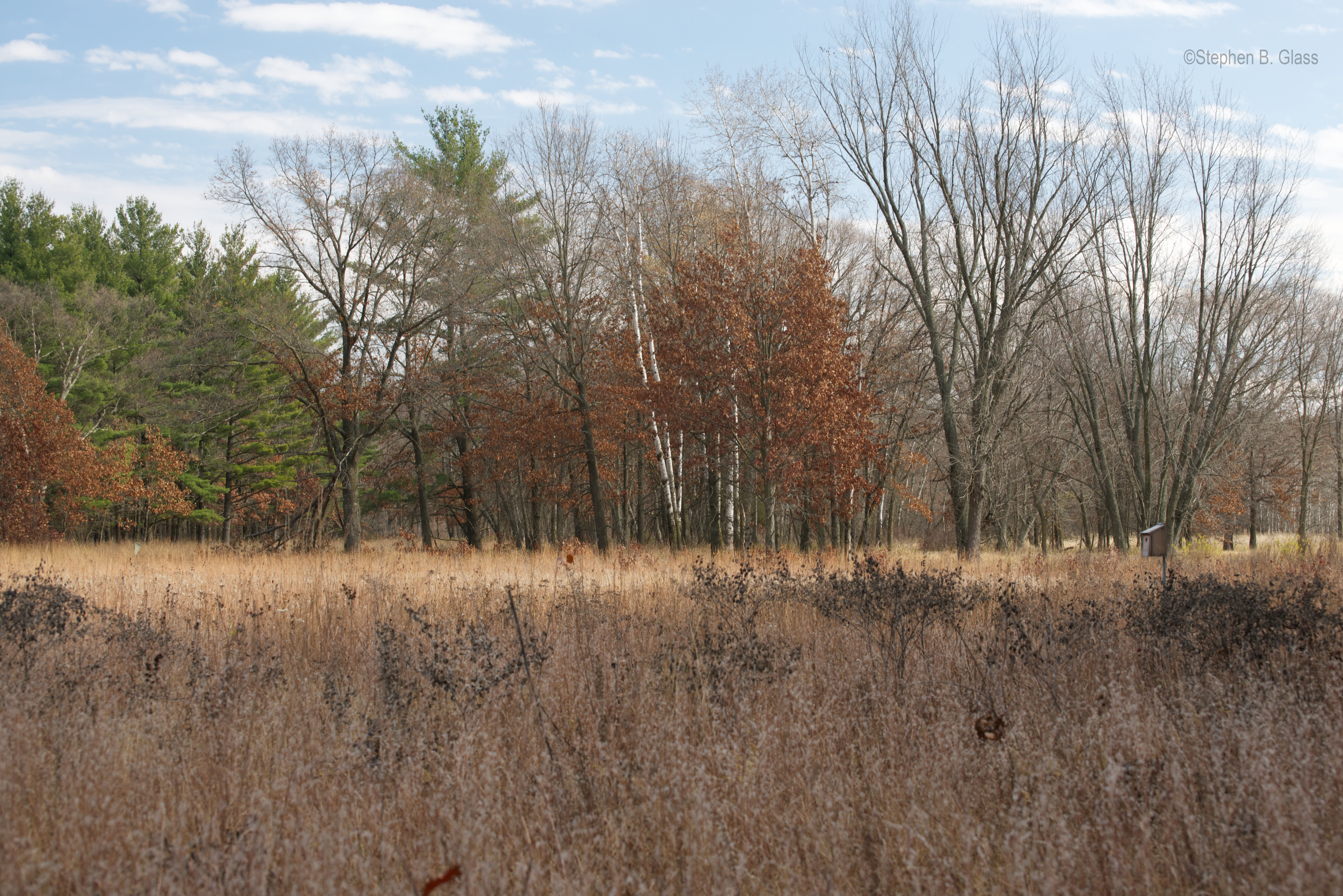 "The ""Shack"" and Aldo's Prairie at The Aldo Leopold Foundation"